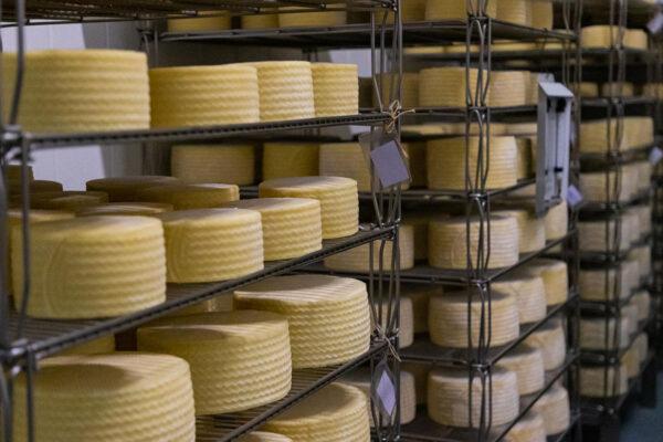 quesos-laurus